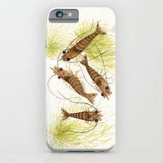 Shrimp ~ Watercolor iPhone 6 Slim Case
