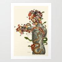 Serpens Anatomical Colla… Art Print