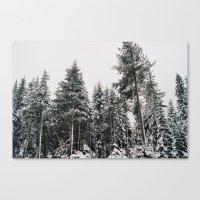 Snowy Paradise Canvas Print