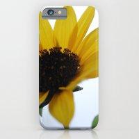 Rising Sun iPhone 6 Slim Case