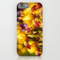 iPhone & iPod Case featuring Bearded irises by LudaNayvelt