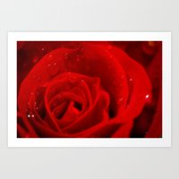 A Rose Is A Rose Is A Ro… Art Print