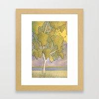 Birch 1 Framed Art Print