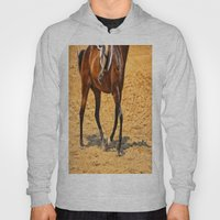Horse Gallop Hoody