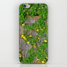 Wallflowers 2 iPhone & iPod Skin