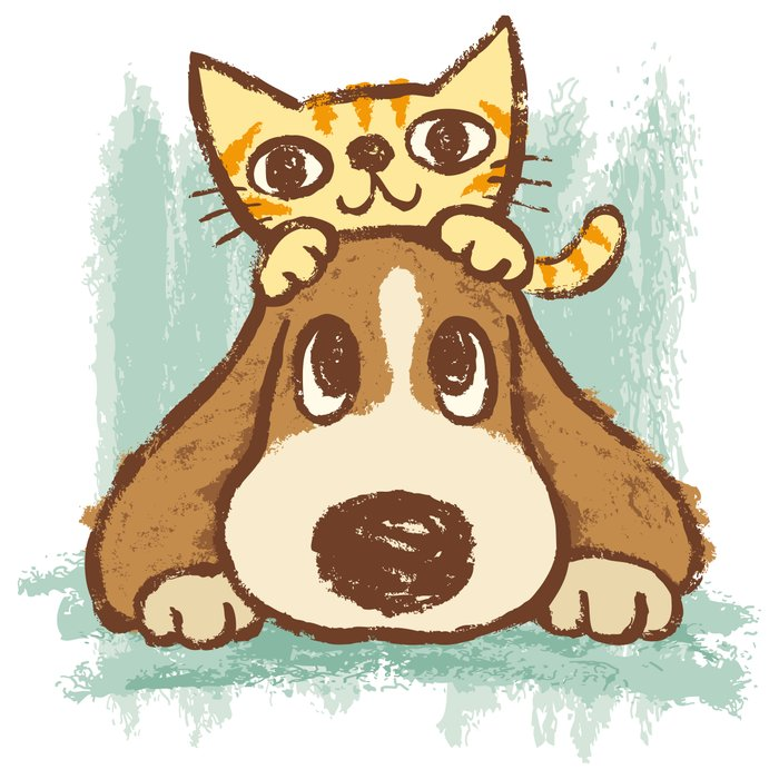 Sketch Cat And Dog Picture Facebook