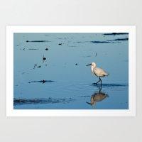 Egret Walk Art Print