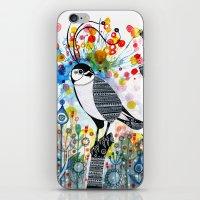 Happy hawk iPhone & iPod Skin