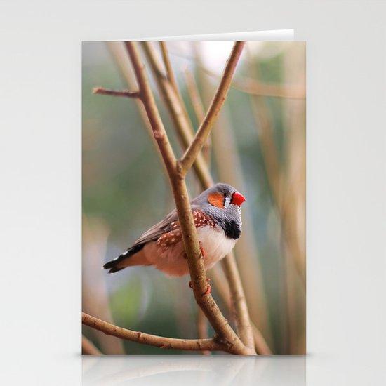 Zebra Finch Stationery Card