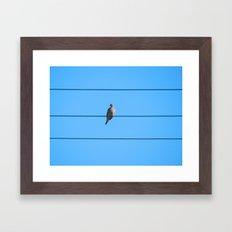 The Dove  Framed Art Print