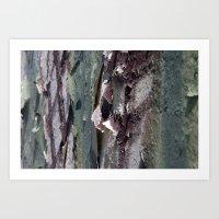 Landscape 3310C Art Print