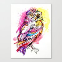 Neon Northern Pygmy Owl Canvas Print