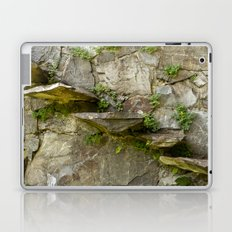 The Fragile Stairs Laptop & iPad Skin
