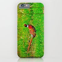 iPhone & iPod Case featuring Ringneck by Biff Rendar