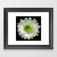 Cactus Flower Framed Art Print