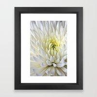 White Dahlia Flower Framed Art Print