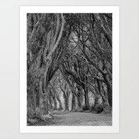 The Trees, Norfolk Art Print
