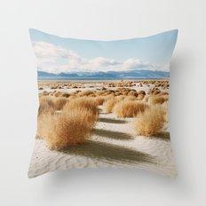 Paiute Land Throw Pillow