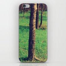 Silvan iPhone & iPod Skin