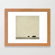 Black Angus Cattle  Framed Art Print