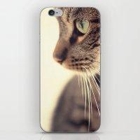 Kitty Love 2 iPhone & iPod Skin