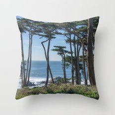 Into Lands End Throw Pillow