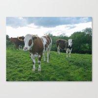 Intolerant Lactose Canvas Print