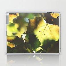 Fall Is In the Air II Laptop & iPad Skin