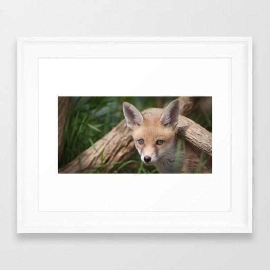 Fox Cub Framed Art Print