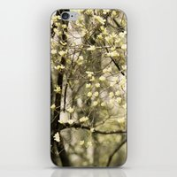 Let's Get Lost In The Dogwoods iPhone & iPod Skin