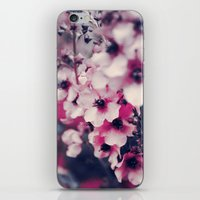Everviolet iPhone & iPod Skin