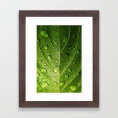 Think Green Framed Art Print