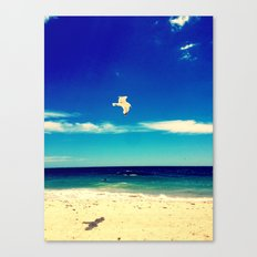 Lonesome Seagul Canvas Print