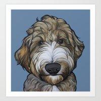 Seamus the Labradoodle Art Print