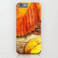 AUTUMN 1 iPhone 6 Slim Case