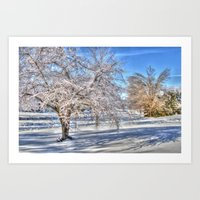 After Ice Storm Art Print