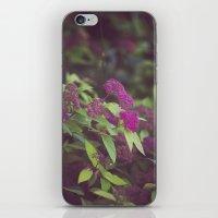 purple flower. iPhone & iPod Skin