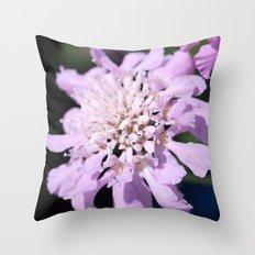 Pincushion flower Throw Pillow