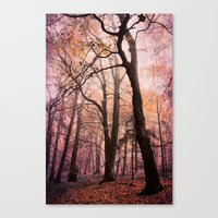 Fairytale Forest Canvas Print