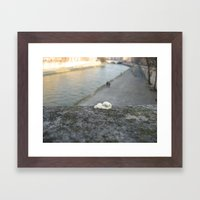 gum, Paris Framed Art Print
