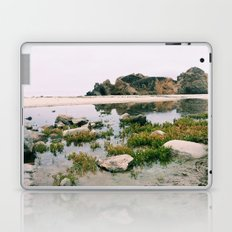 Pfeiffer Beach Laptop & iPad Skin