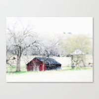 old man red Canvas Print