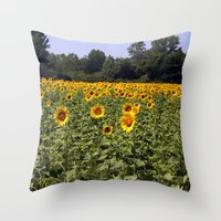 Field Of Sunflowers Colo… Throw Pillow