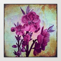Pink Flowers And Rust Canvas Print