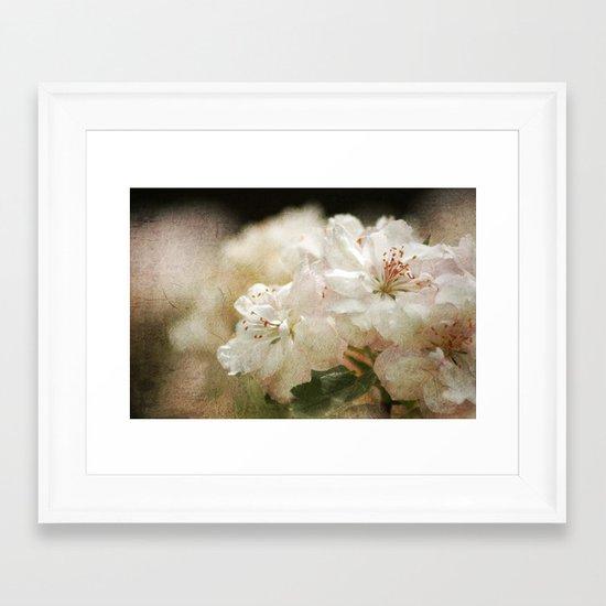 Blossom in Springtime 2 Framed Art Print