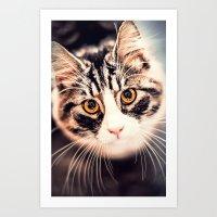 Greta, the cat Art Print