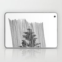 Cypress Laptop & iPad Skin