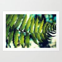 Fern For You Art Print