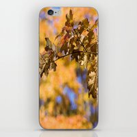 Orange Backdrop iPhone & iPod Skin