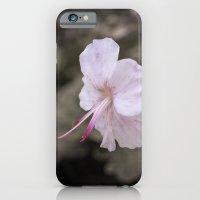 Delicate Reach iPhone 6 Slim Case
